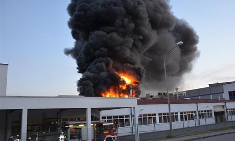 Brand In Roding